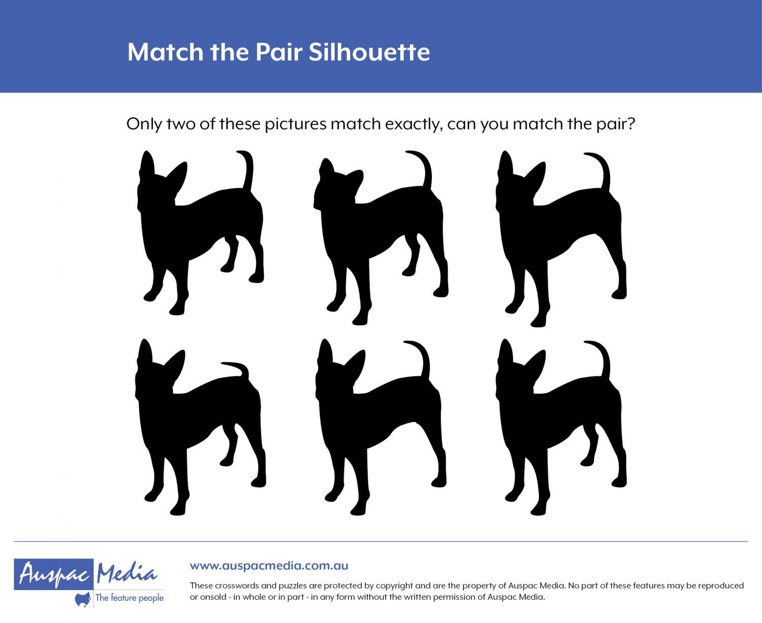 Thumbnail for Match the Pair Silhouette