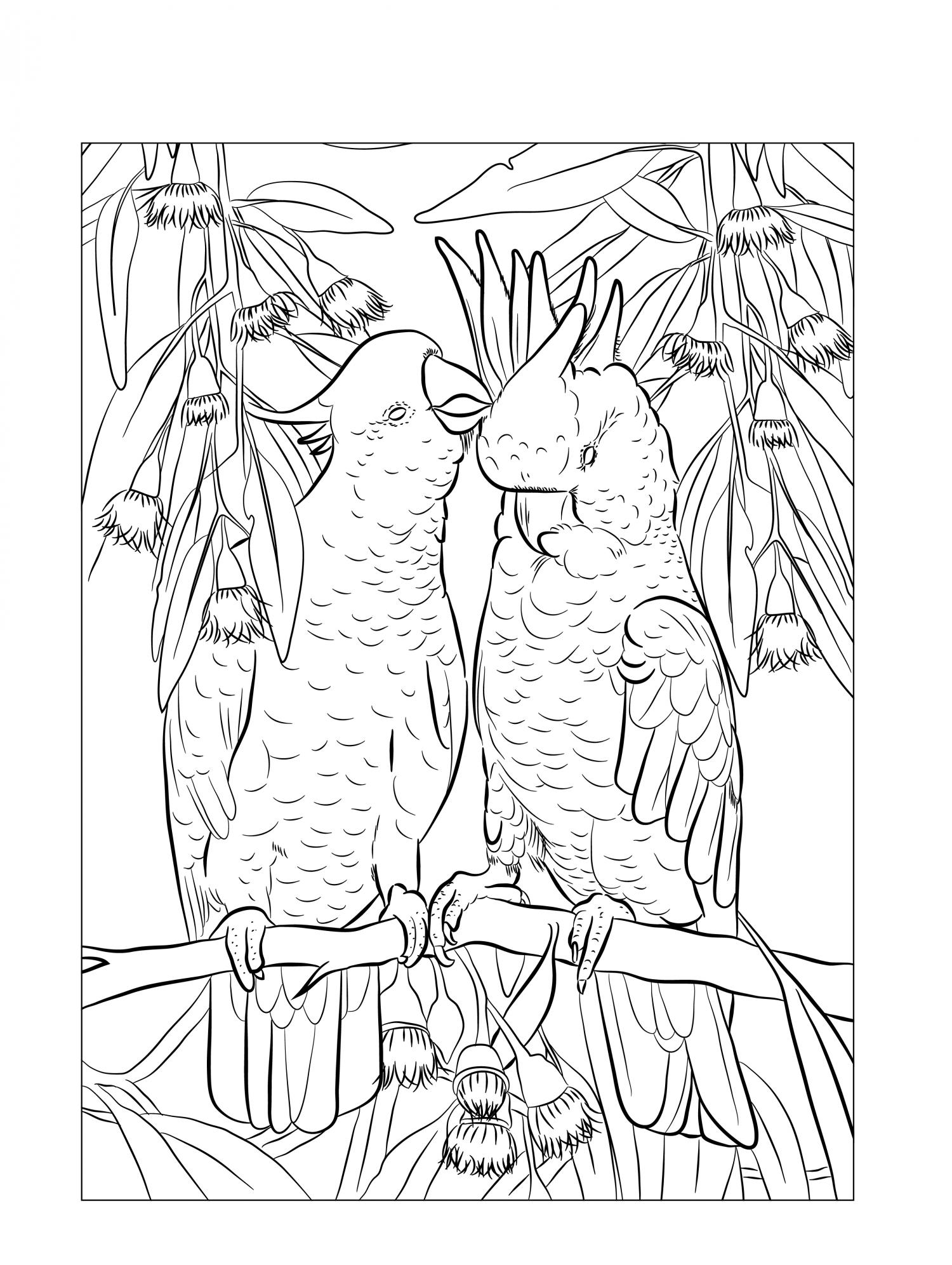 Thumbnail for Mindfulness Colouring-In